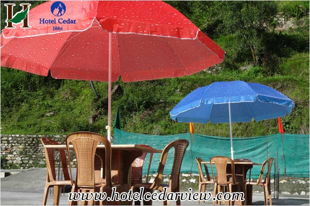 hotels in jibhi banjar resorts and hotels in hp adventure hotels jibhi banjar hotels in manali hp hotels in himachal pradesh India